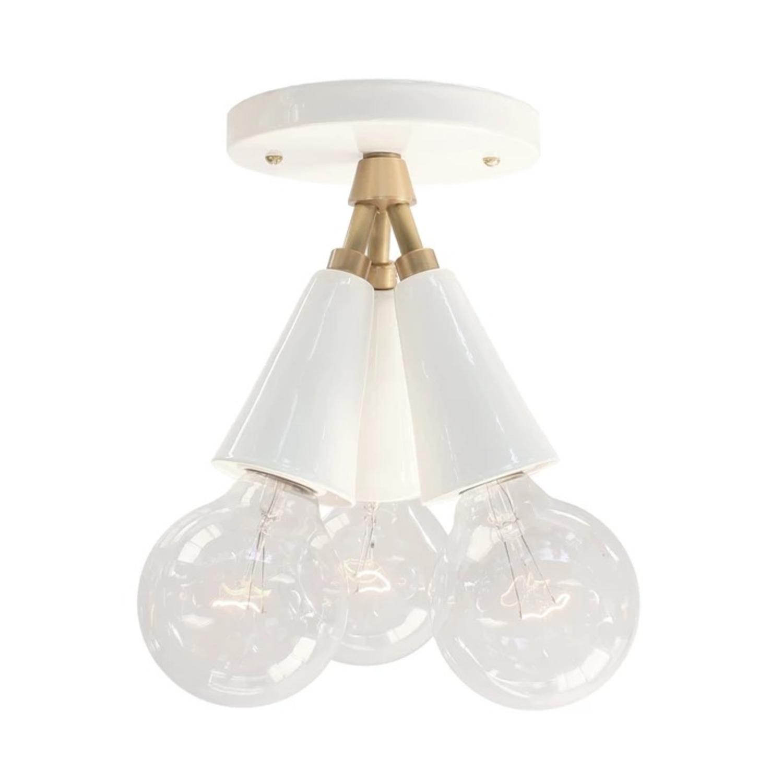 Cedar & Moss Spectra Ceiling Mount Light Fixture - image-0