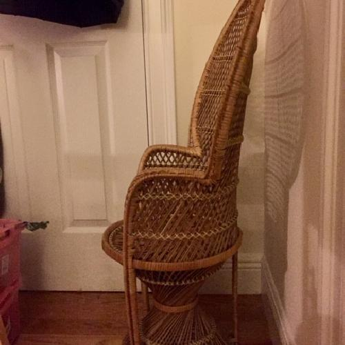 Kids Rattan Peacock Chair