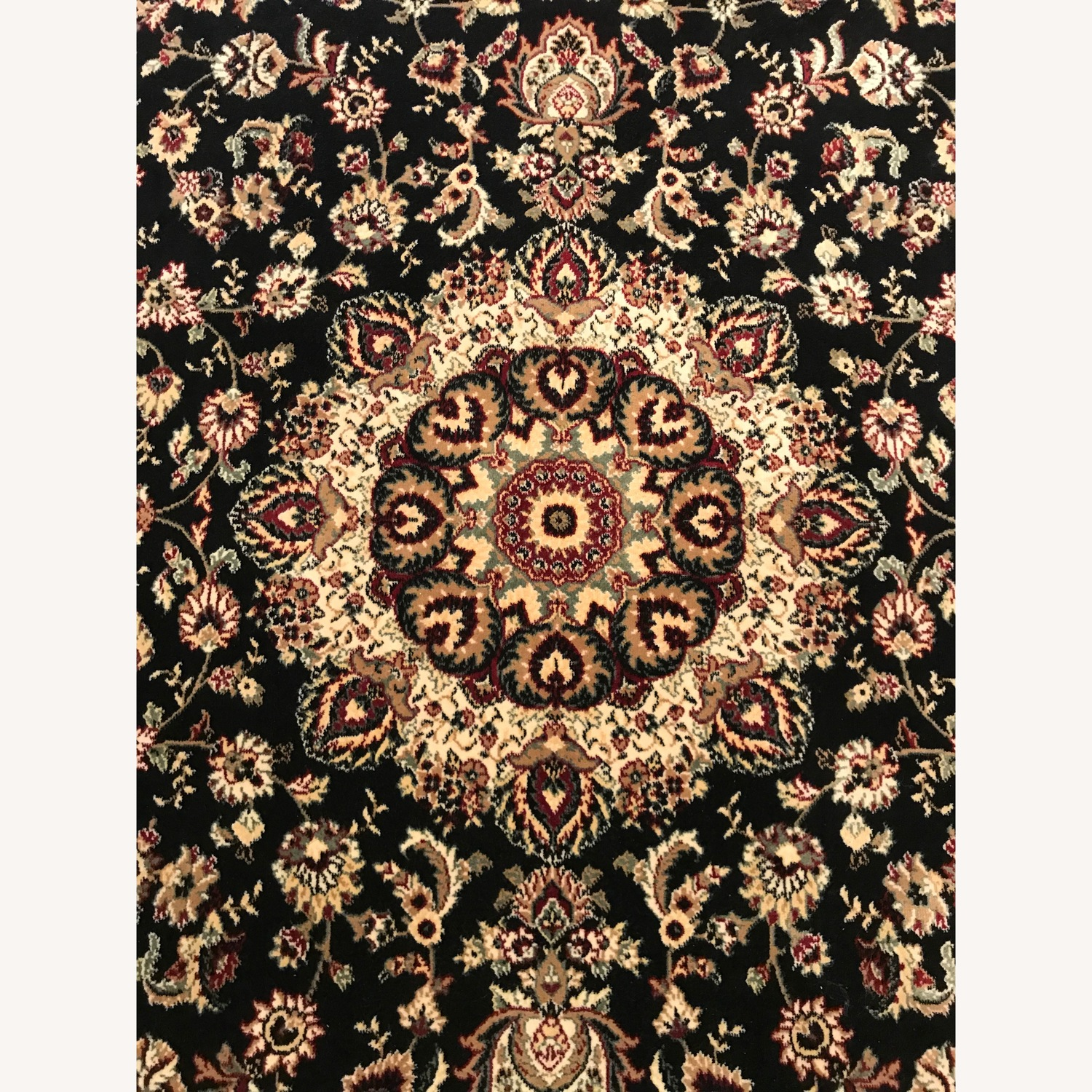 Beautiful Area Rug - image-0