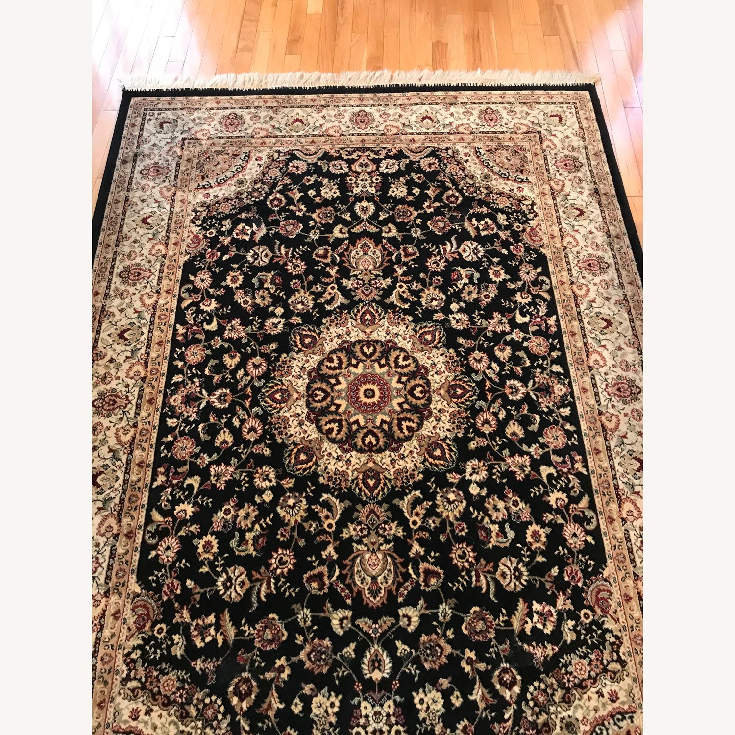 Beautiful Area Rug - image-3