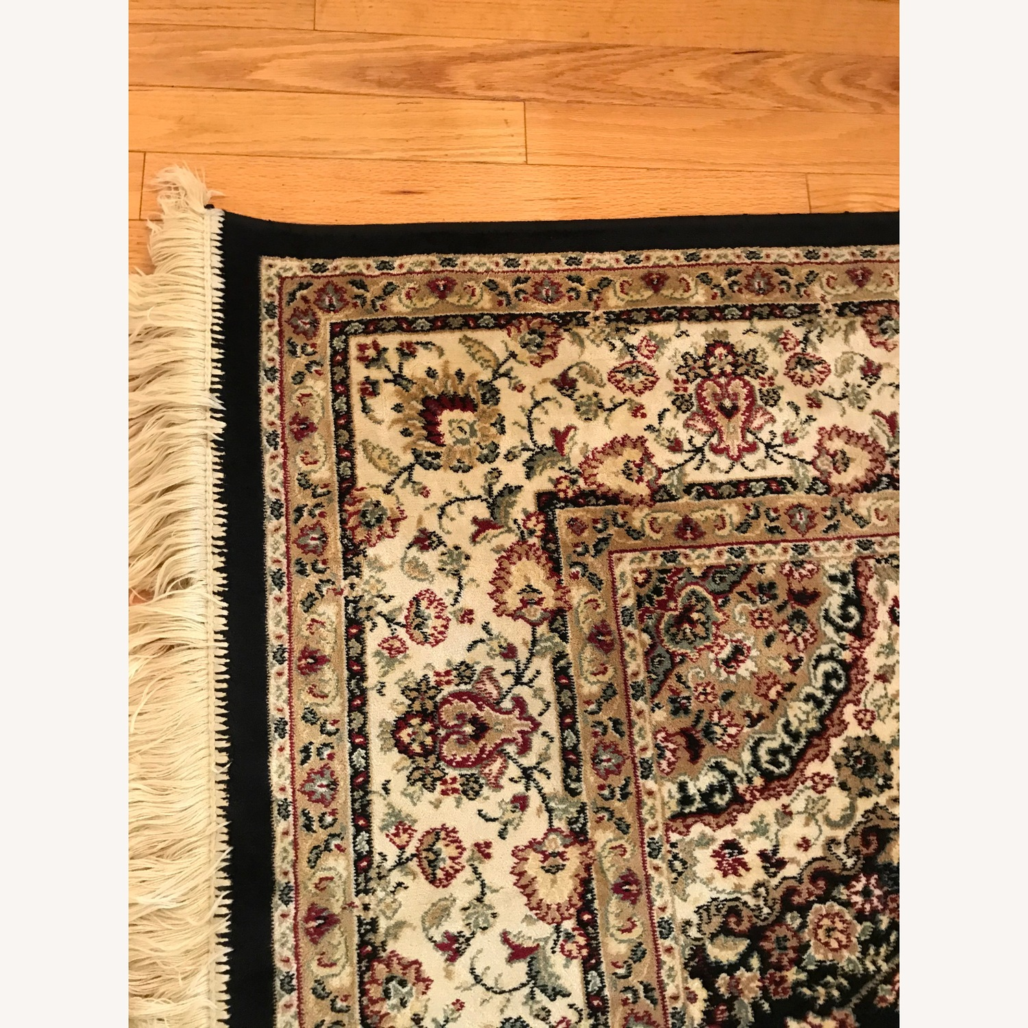 Beautiful Area Rug - image-4