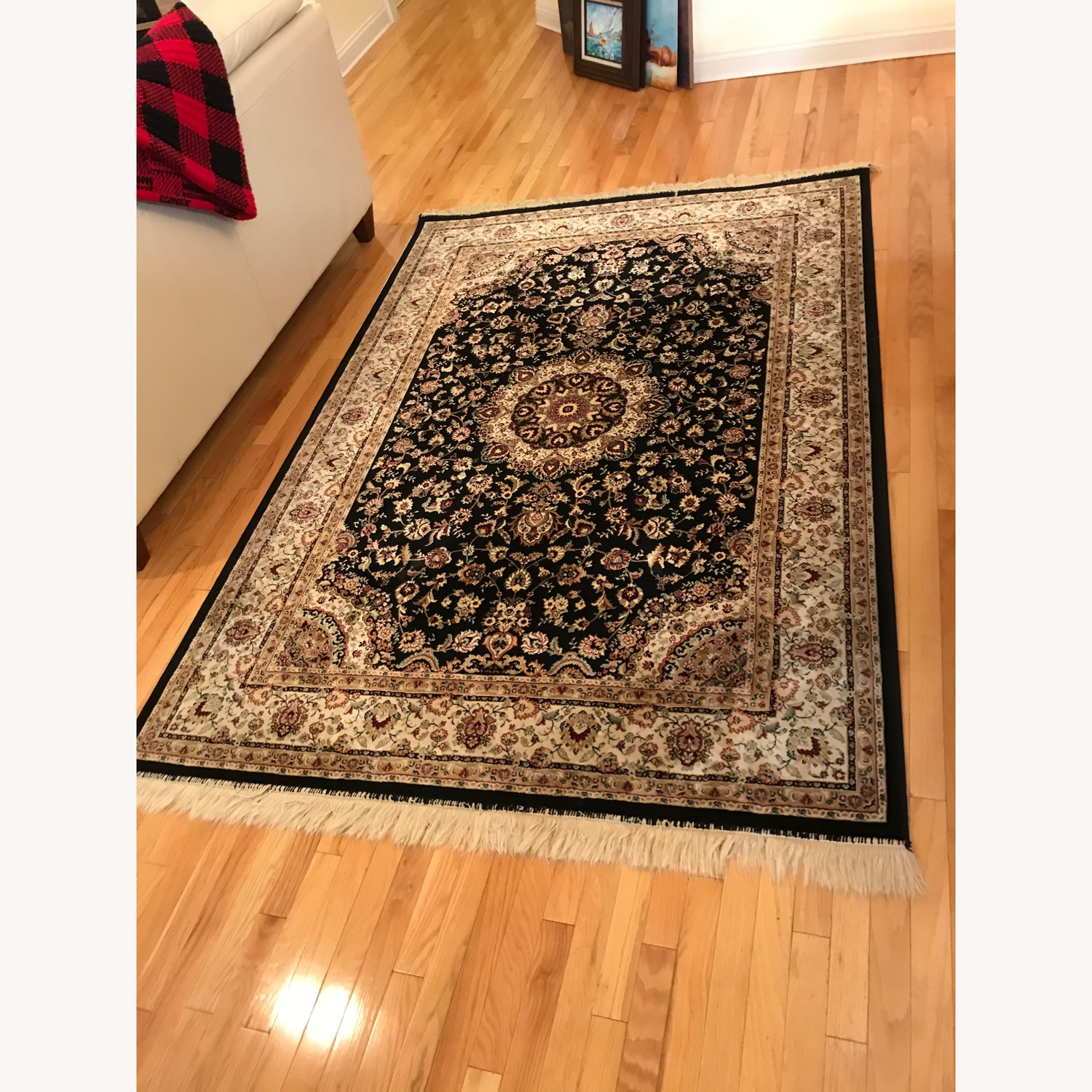 Beautiful Area Rug - image-7