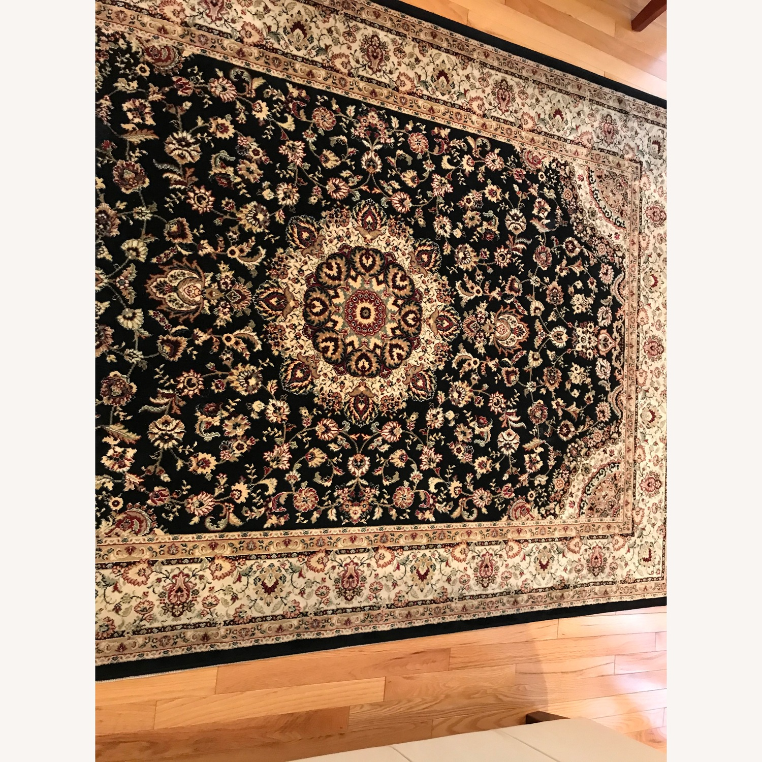 Beautiful Area Rug - image-6