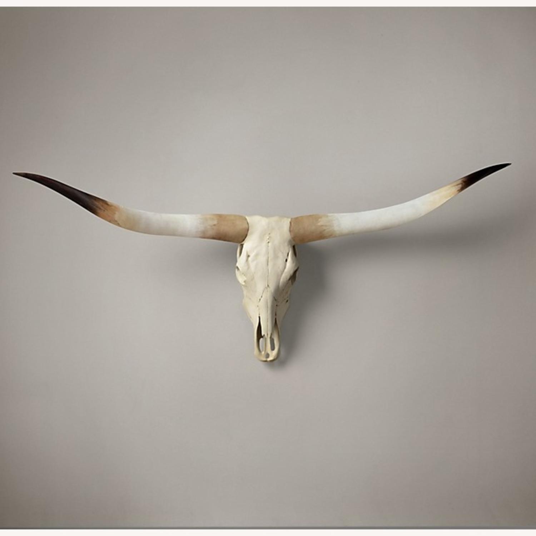Restoration Hardware Texas Longhorn Steer Skull - Natural