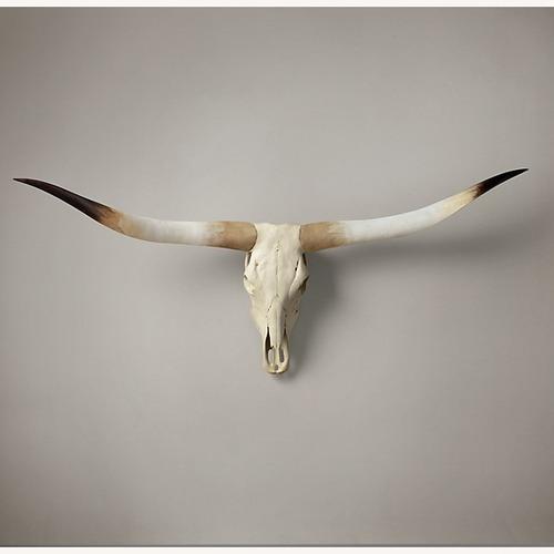 Used Restoration Hardware Texas Longhorn Steer Skull - Natural for sale on AptDeco