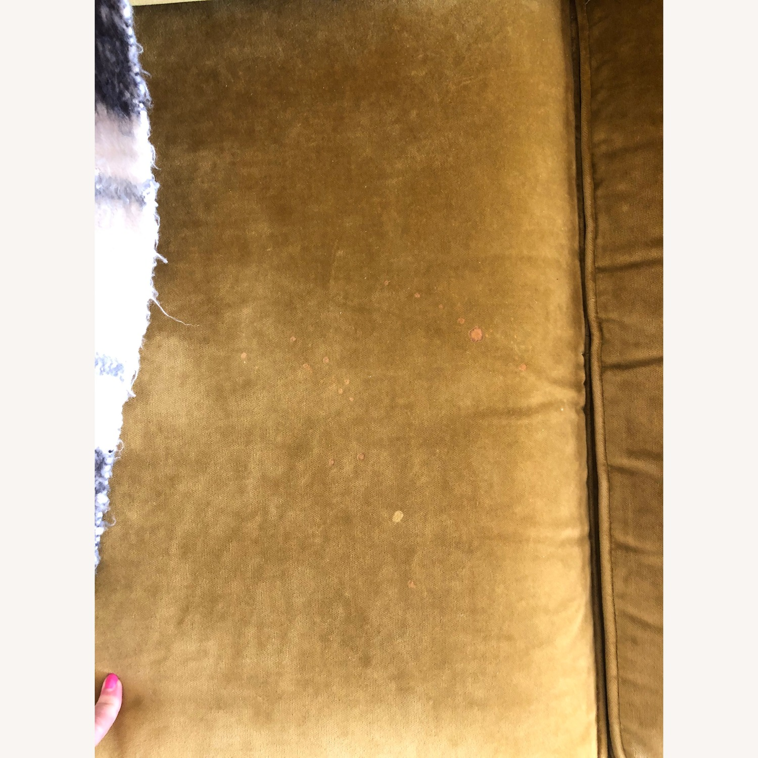 Crate & Barrel Green Velvet Couch - image-4