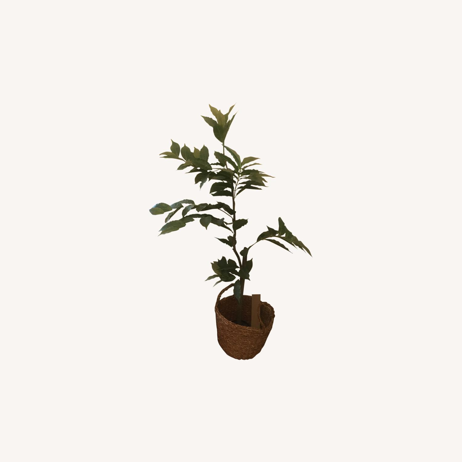 Artificial Potted Tree - image-0
