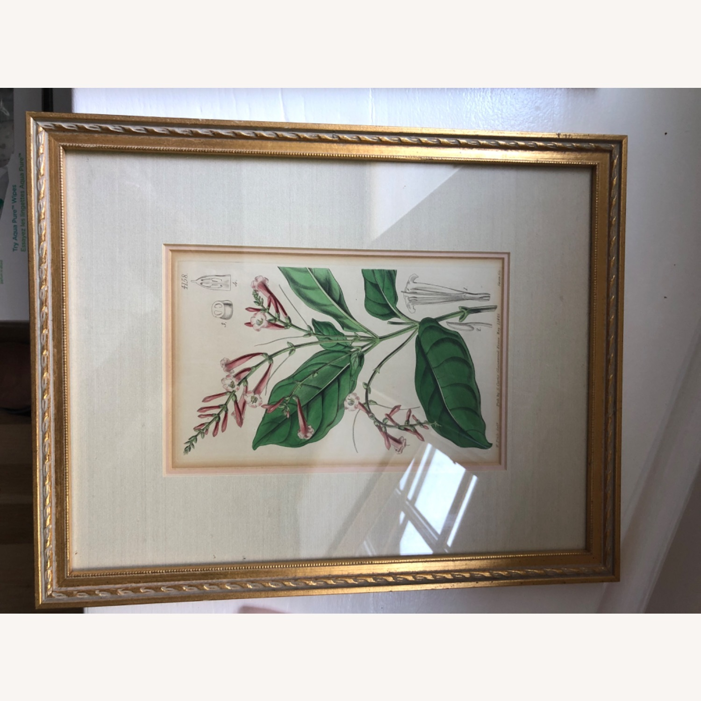 Vintage Two Botanicals - image-2