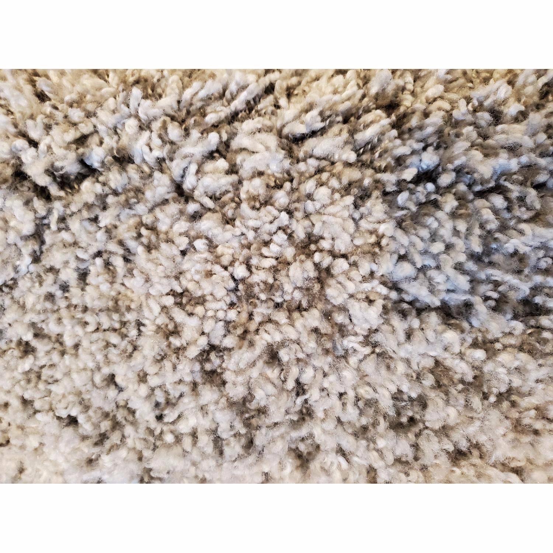 Safavieh Milan Soft Plush Shag Rug - image-4