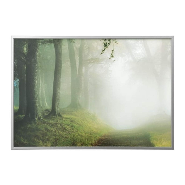 IKEA Bjorksta Woodland Picture - image-1