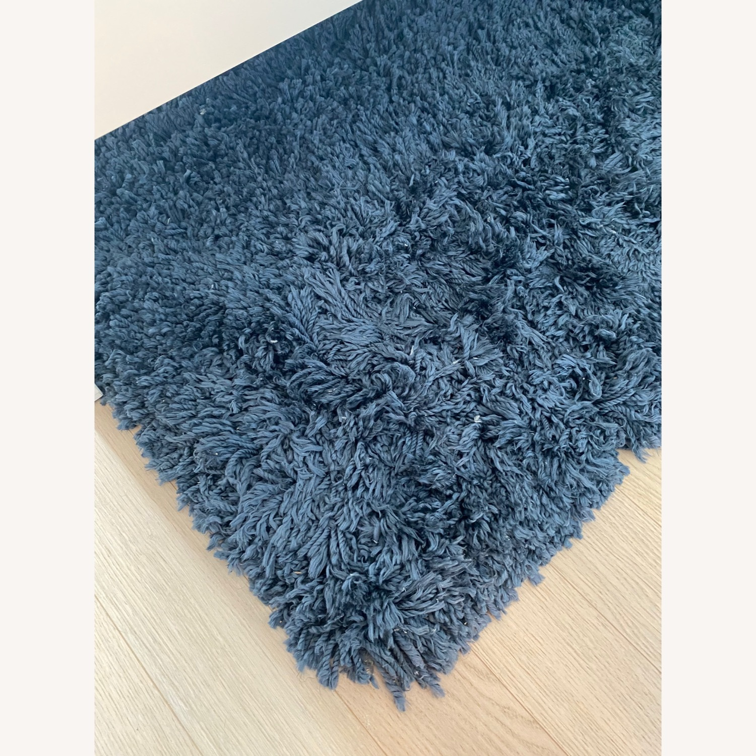 West Elm Cozy Plush Rug - image-3
