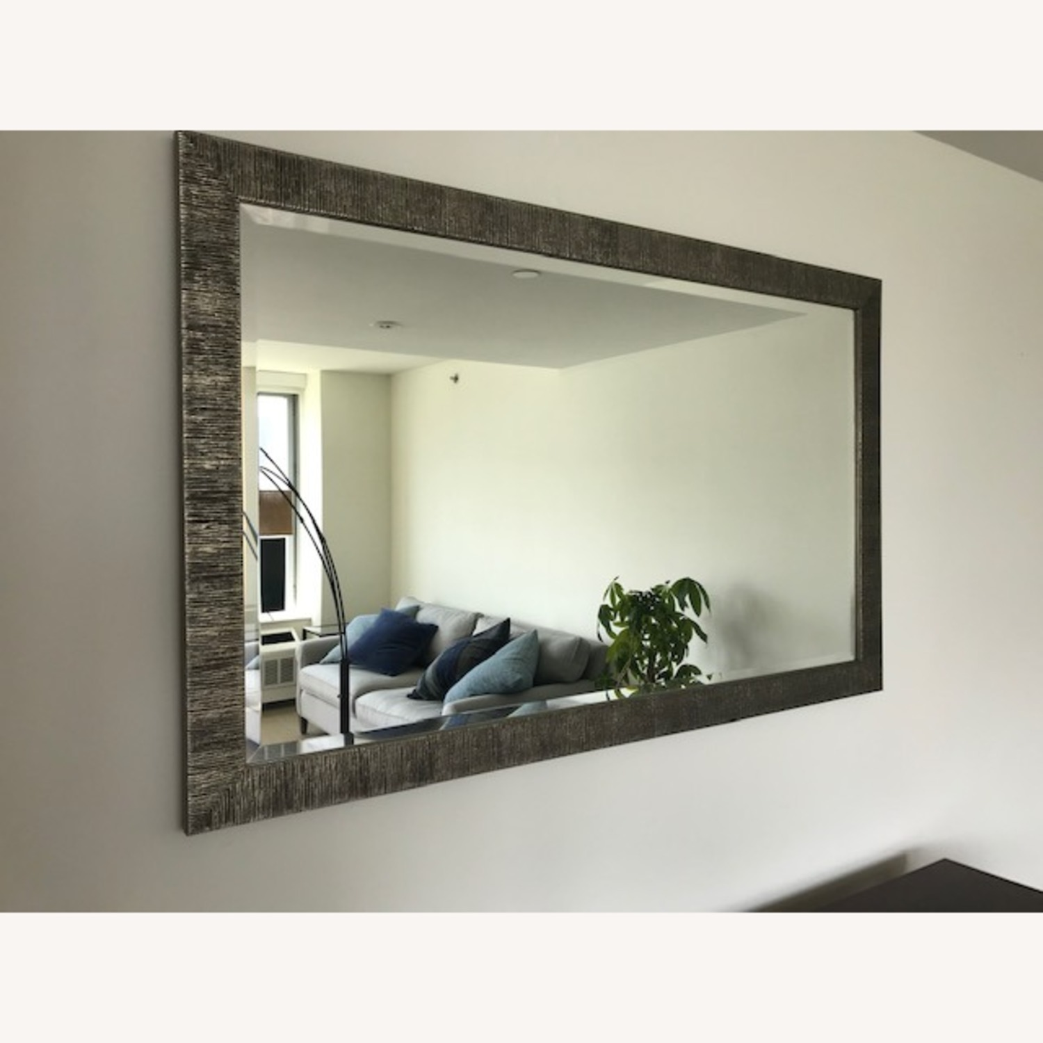 Crate & Barrel Siver Birch Wall Mirror - image-1