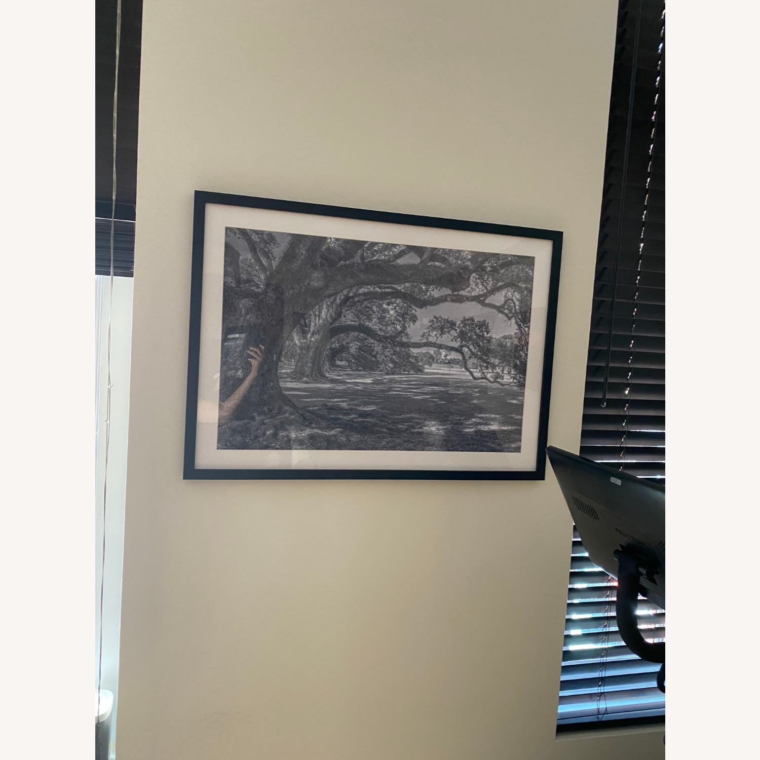 Black and White Framed Photos - image-2