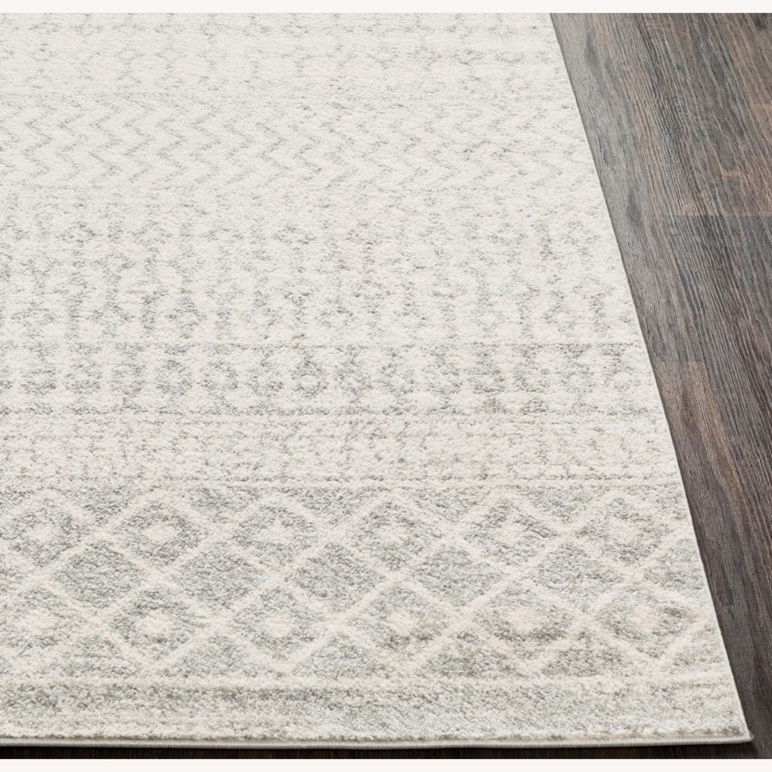 Bohemian Area Rug Antique Silver on White - image-1