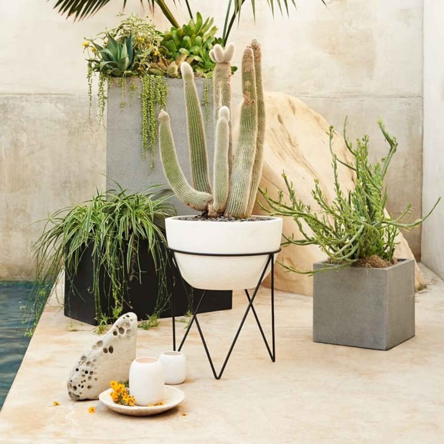 West Elm Iris Planter + Chevron Stand - image-3