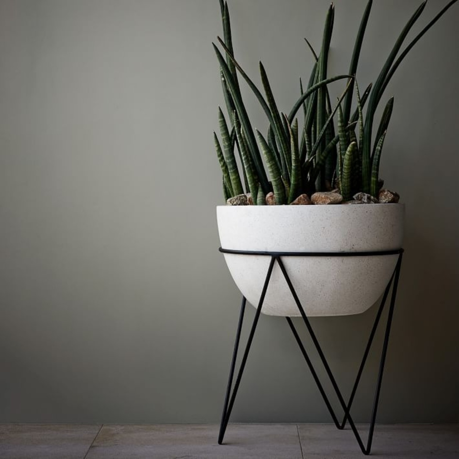 West Elm Iris Planter + Chevron Stand - image-2