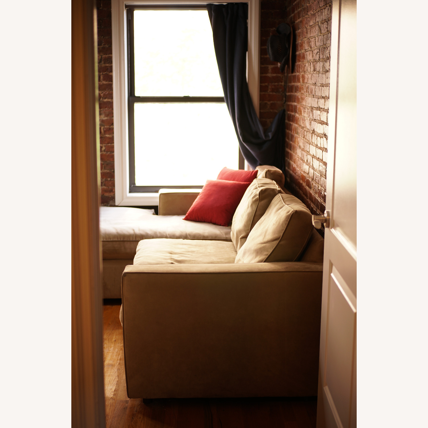 Medium Comfy Couch - image-3