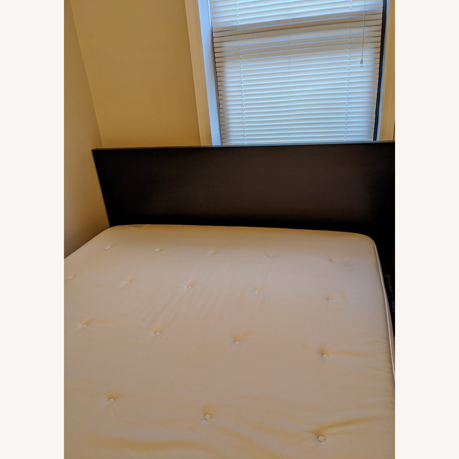 IKEA MALM Queen Black Brown Bed - image-3