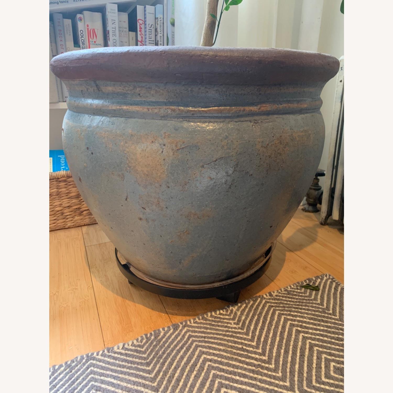 Large Ceramic Pot with Grapefruit Tree - image-2