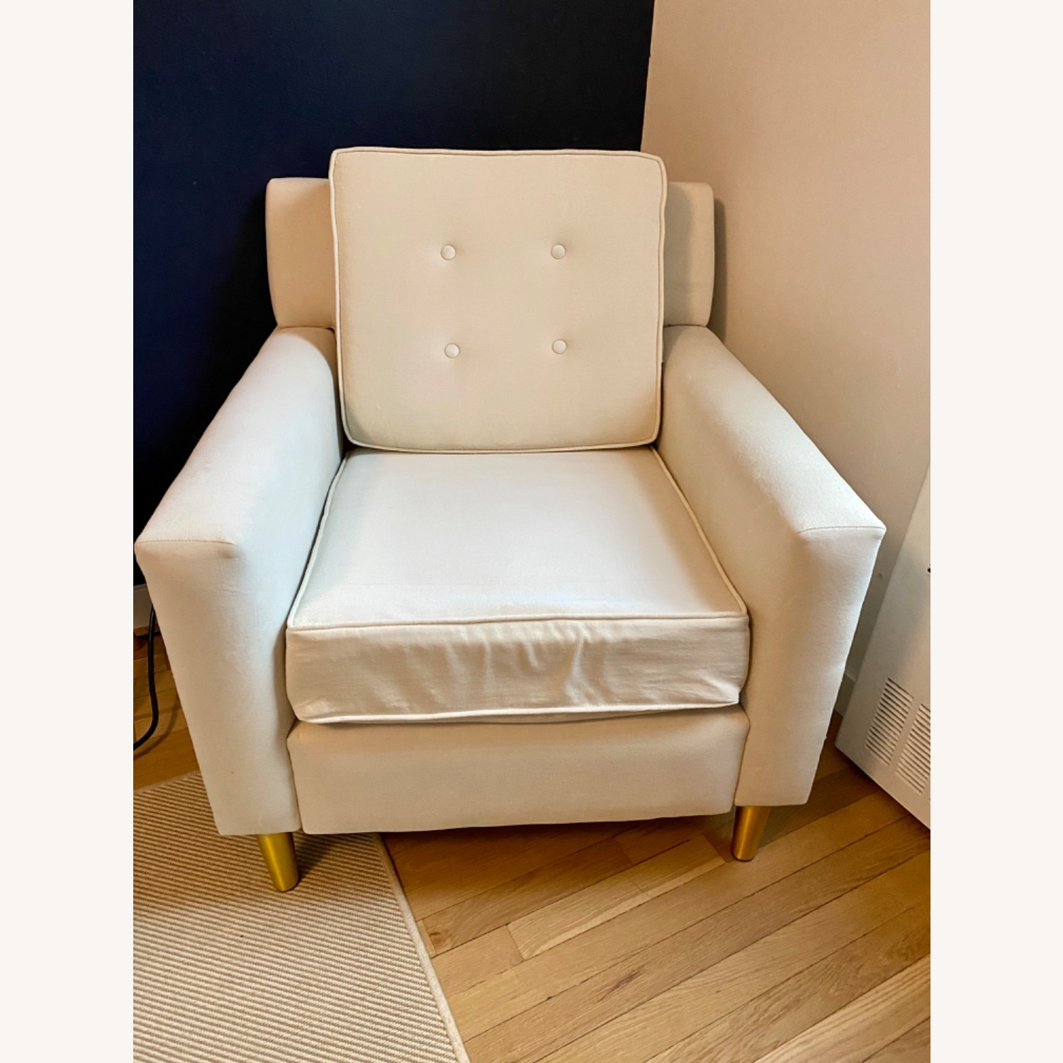 Velvet Chair in Dove with Gold Legs - image-1