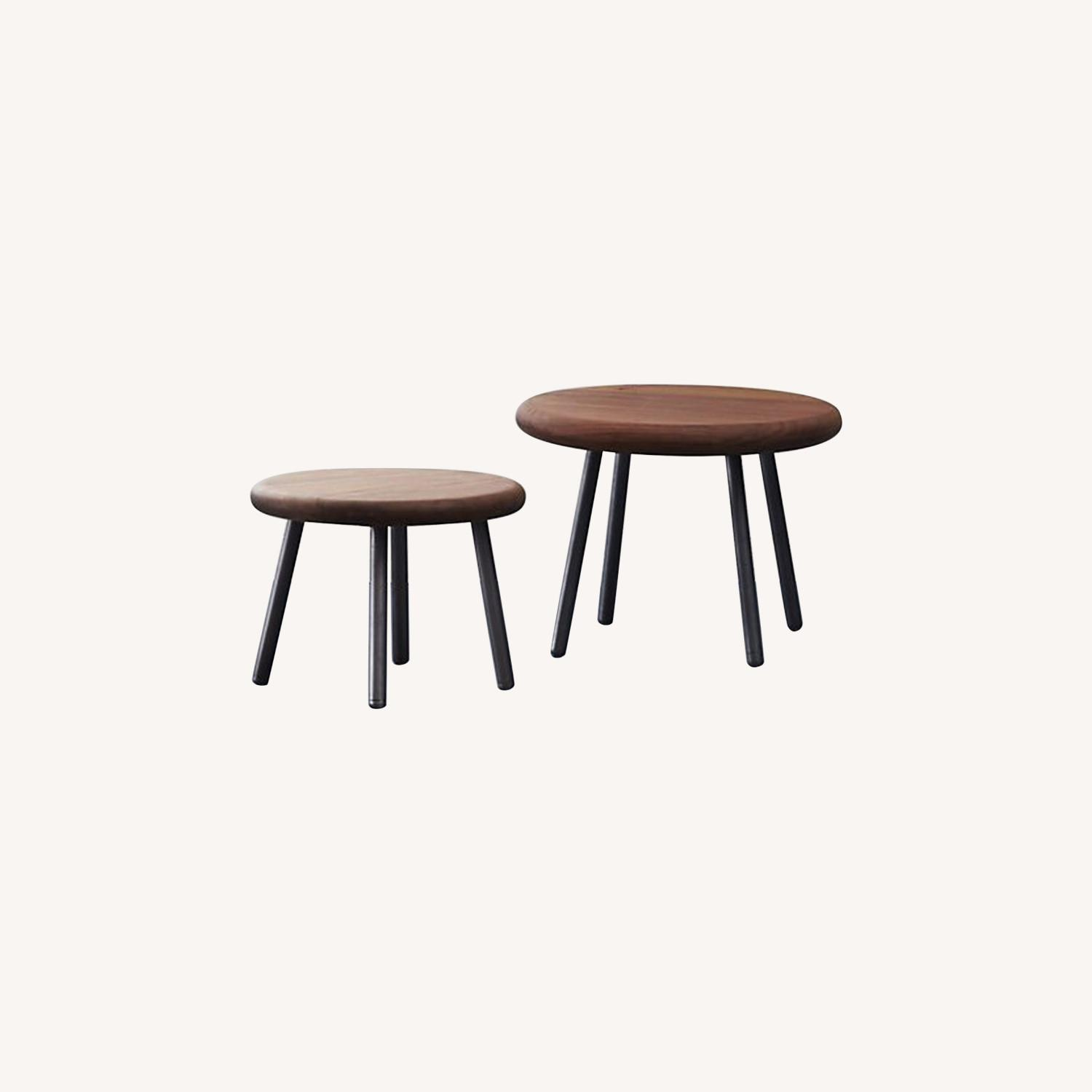 CB2 Wafer 2 Piece Nesting Table Set - image-0