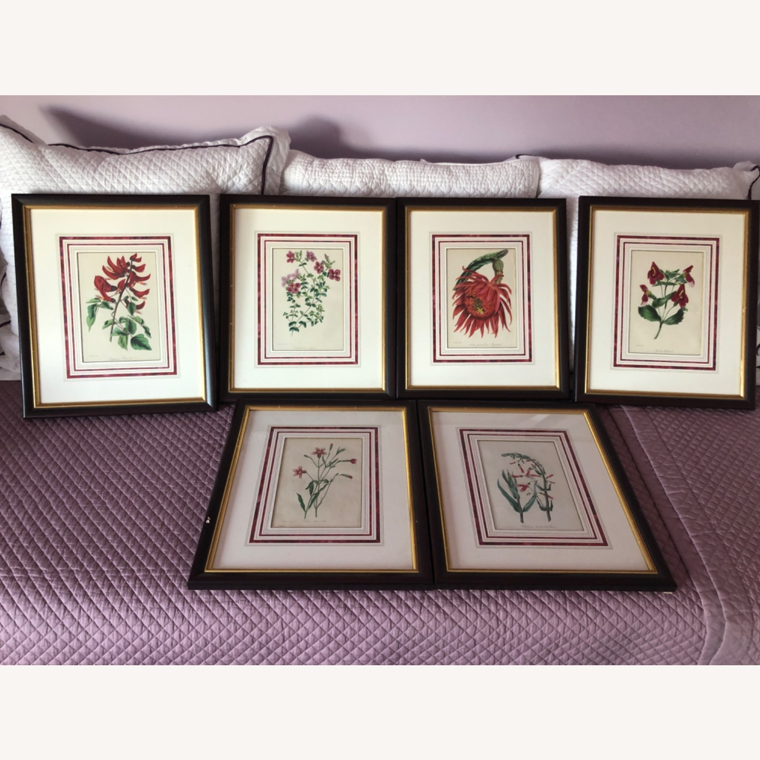 Six Botanical Prints from 1800s - image-1
