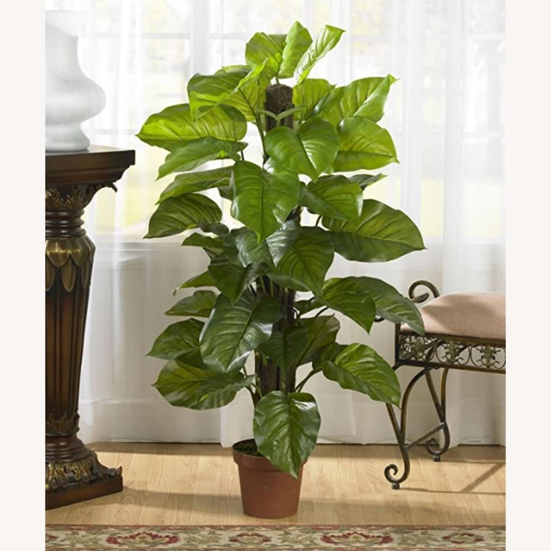 Large Leaf Decorative Silk Plant - image-2