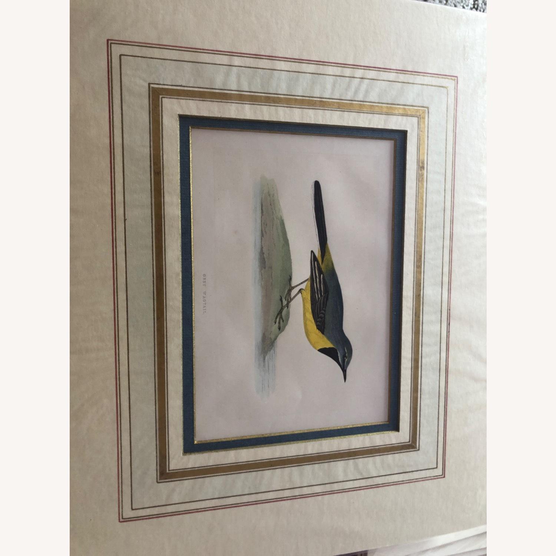 4 Antique Bird Prints - image-1
