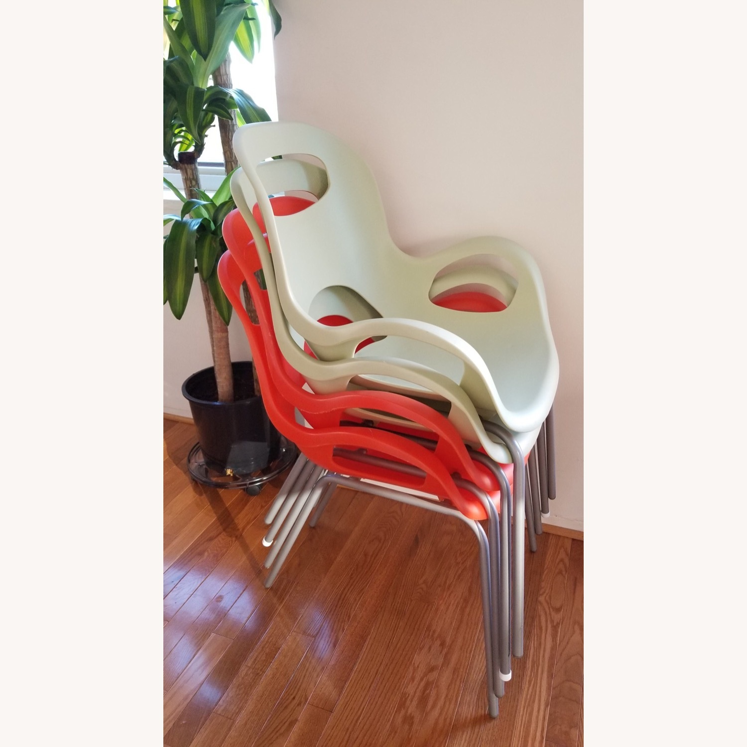 Umbra Oh Chair x 4 - image-1