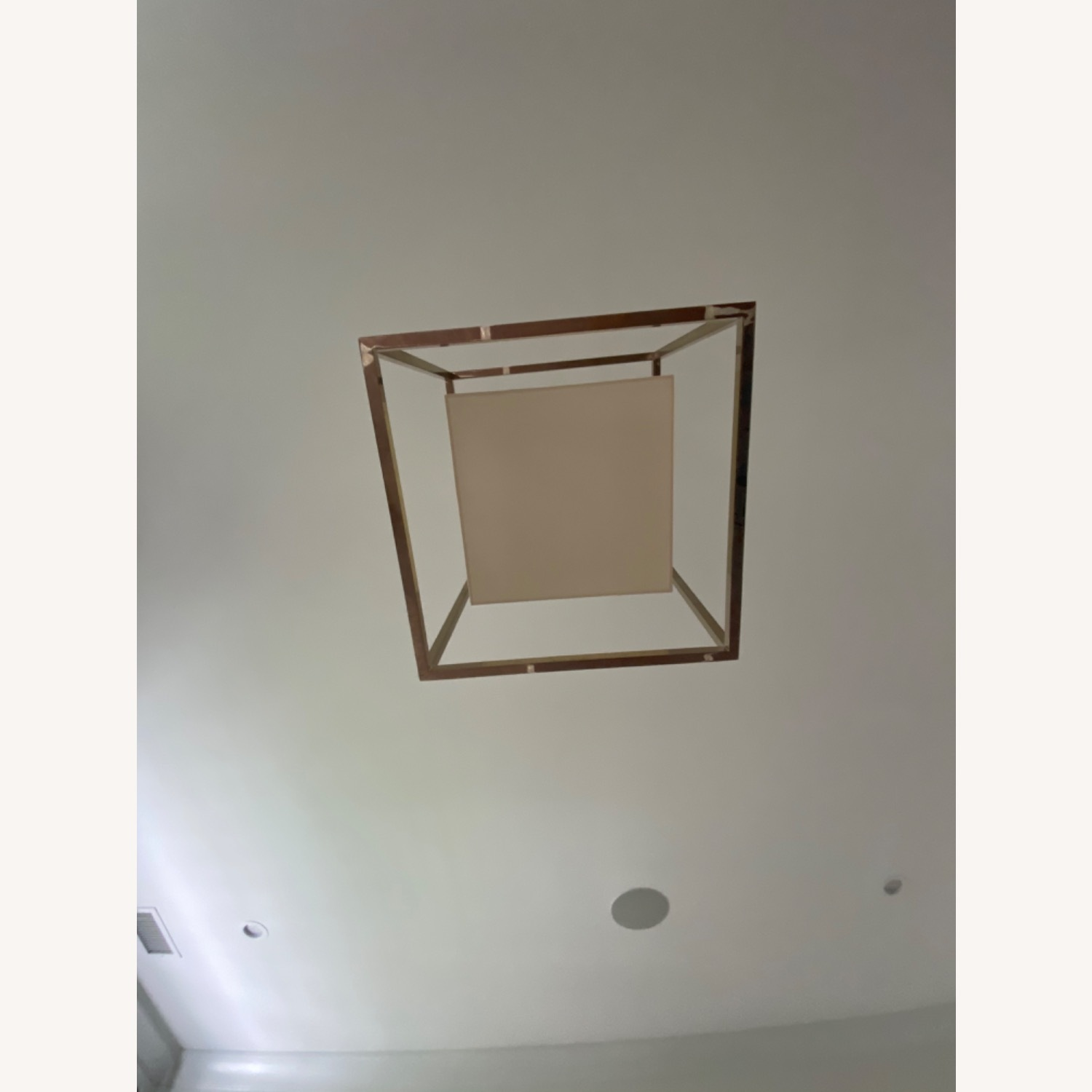 Visual Comfort Caged Ceiling Light - image-3