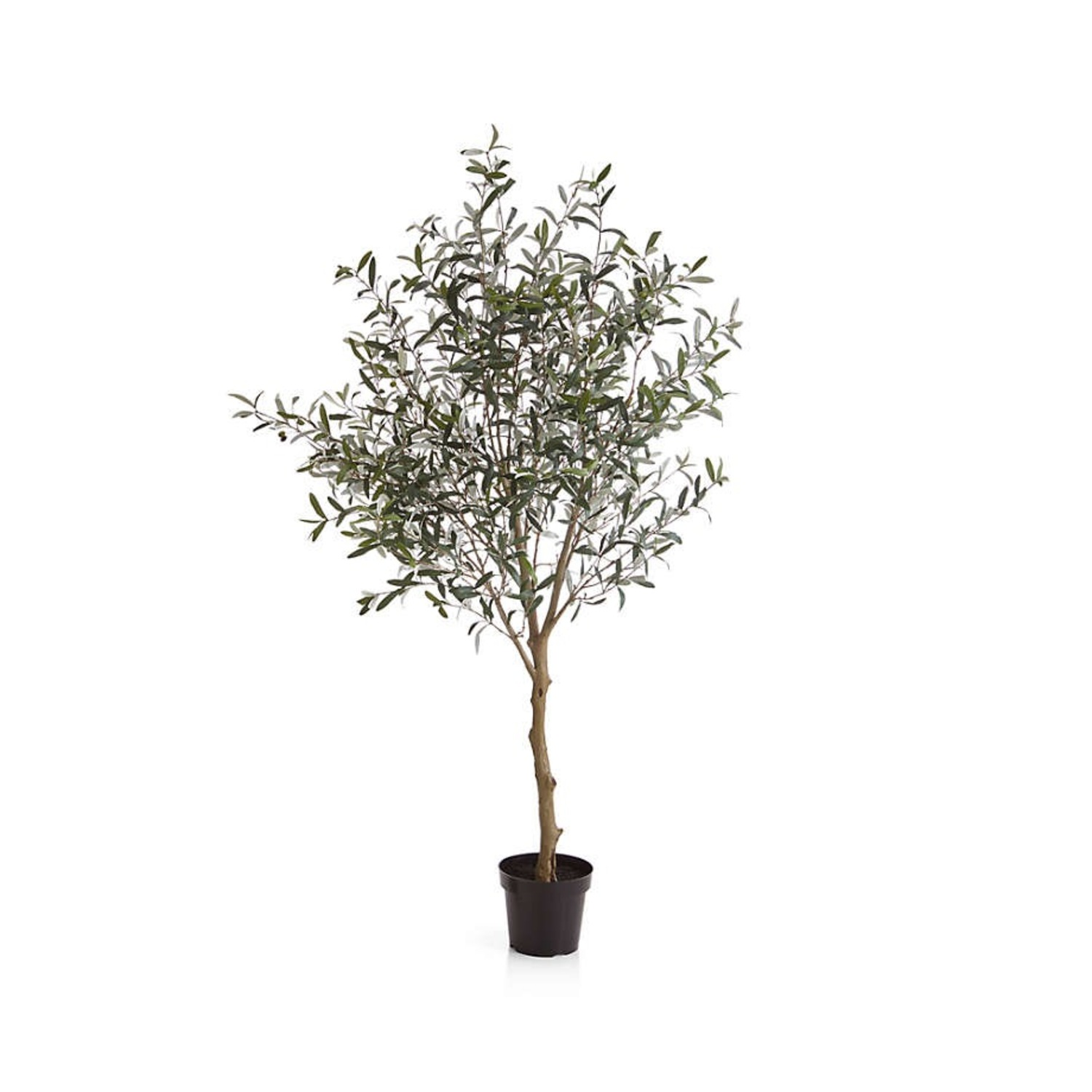 Crate & Barrel 7 Foot Faux Olive Tree - image-2
