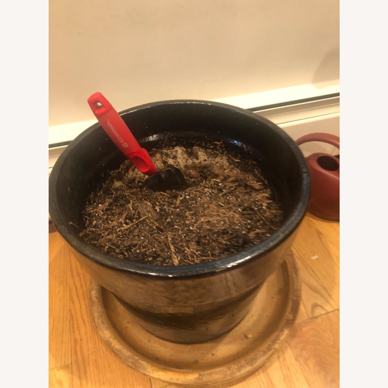 Ceramic Planter with Saucer - image-3