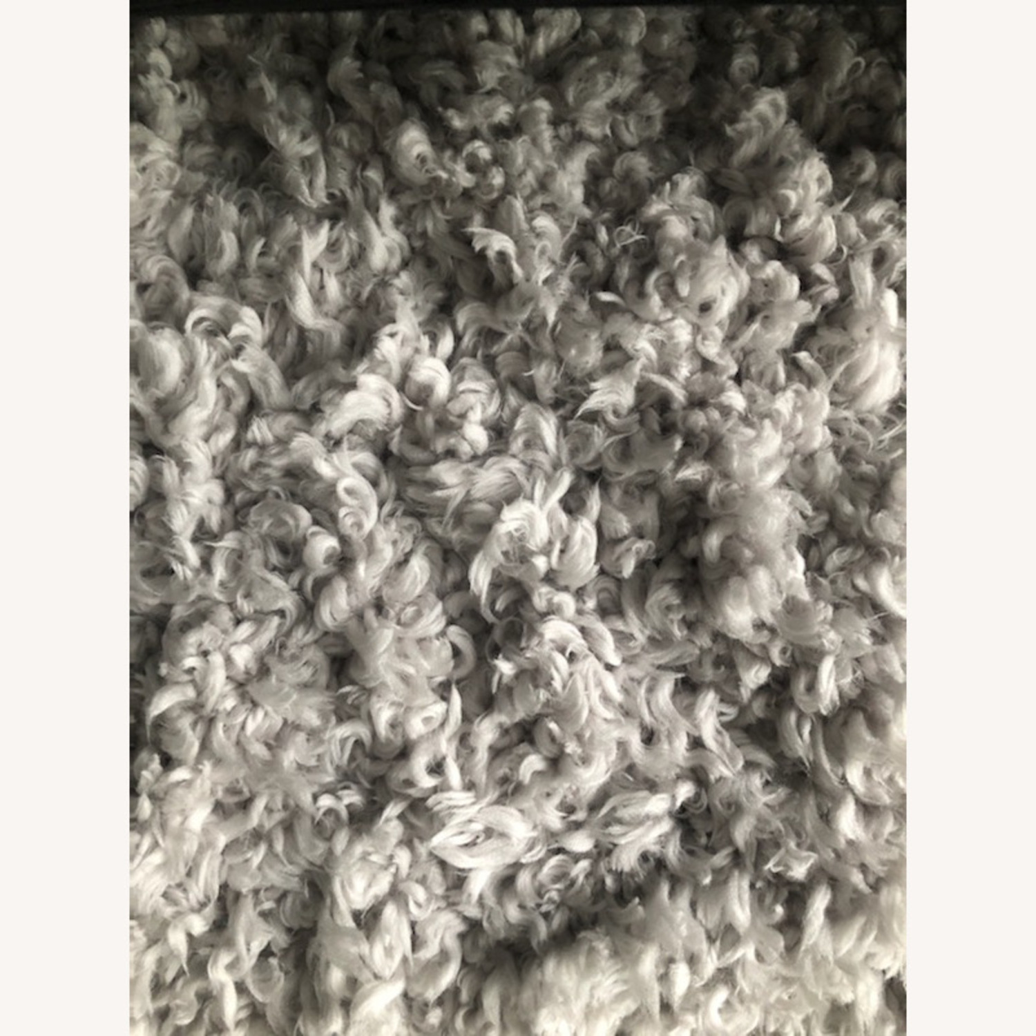 West Elm Frost Gray Cozy Plush Rug - image-4