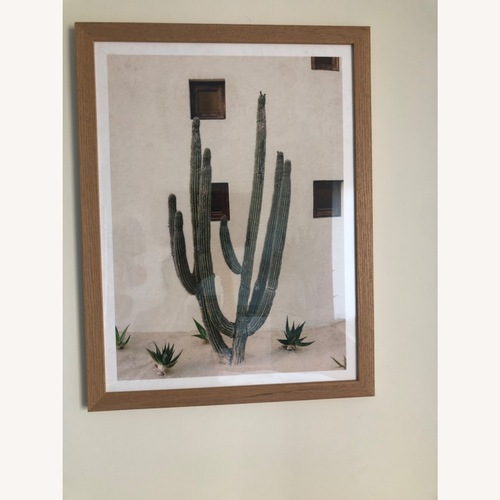 Used Urban Outfitters Cabo Cactus Framed Art Print for sale on AptDeco