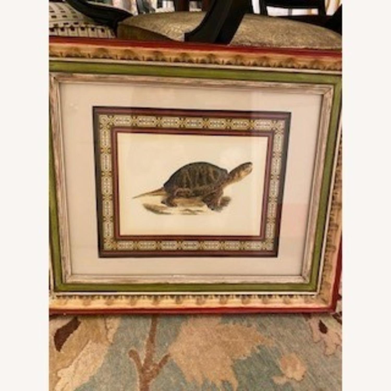 John-Richard Tortoise Prints Bful Wood Frame - image-3
