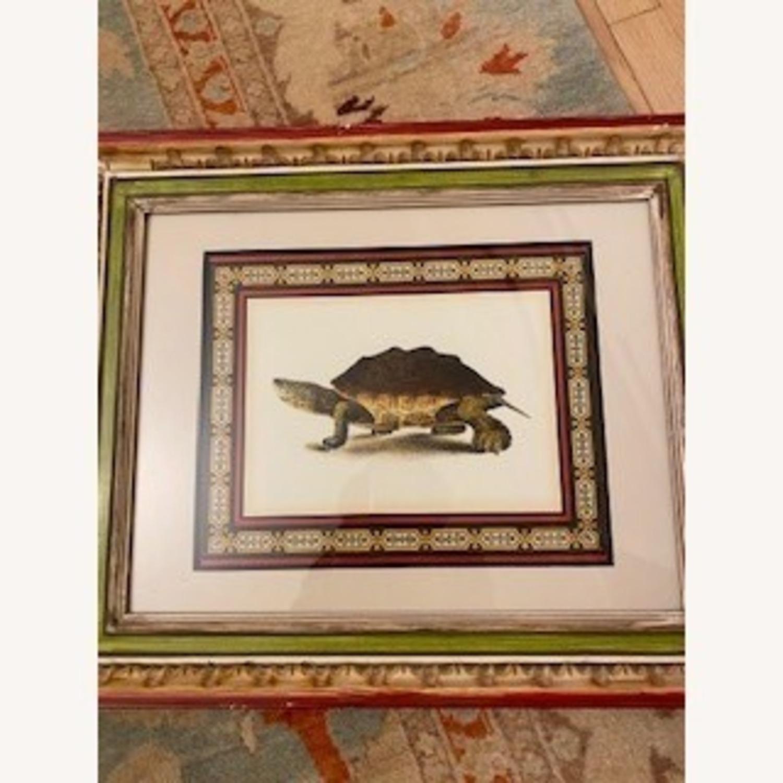 John-Richard Tortoise Prints Bful Wood Frame - image-4