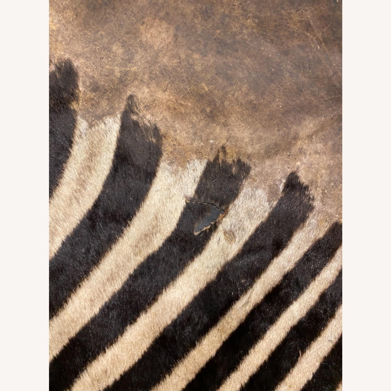 Vintage Real Zebra Hide Rug - image-6