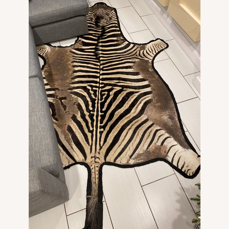 Vintage Real Zebra Hide Rug - image-4