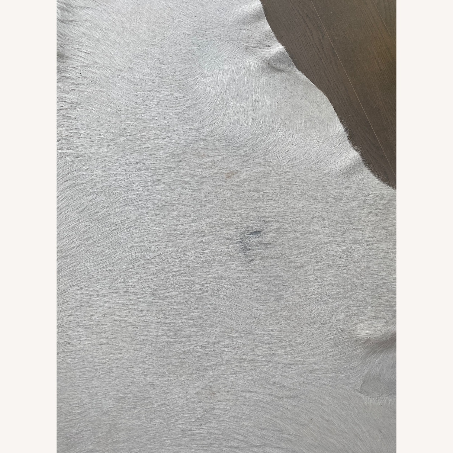 White Extra Large Real Cow Hide Rug - image-2