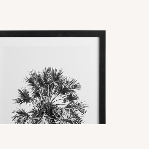 Used Feather Palm Framed Print for sale on AptDeco