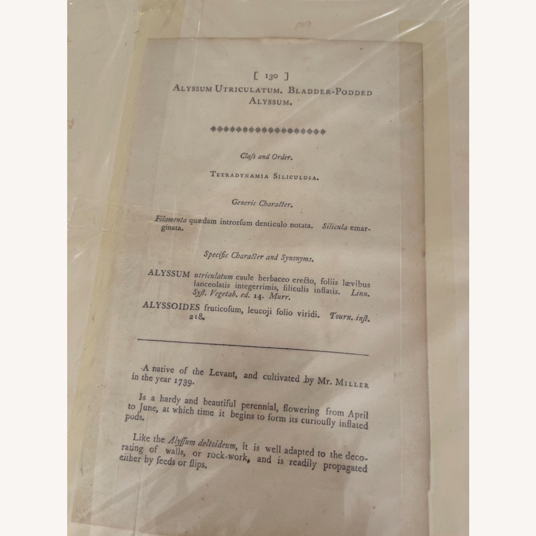 Original Yellow Prints - image-1