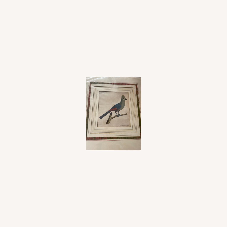 Mexican Crown Bird Print - image-0
