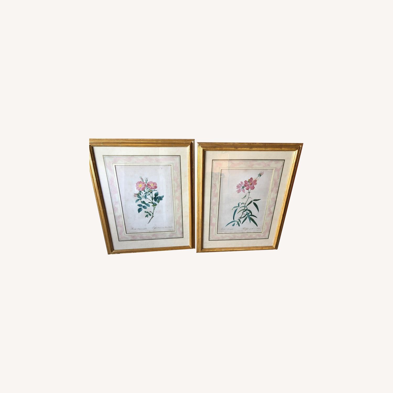 Pair Framed Redoute Engravings - image-0