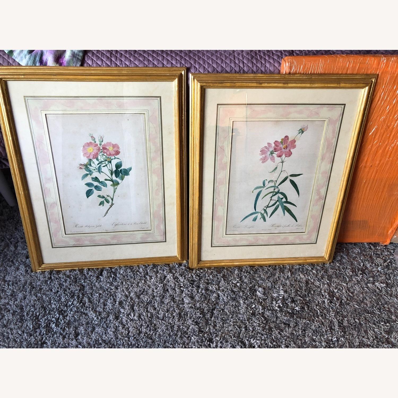 Pair Framed Redoute Engravings - image-1