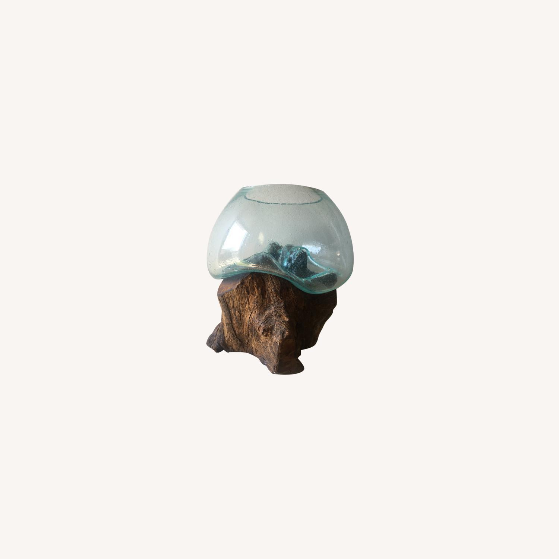 WestElm Wood + Glass Terrarium - Large - image-0