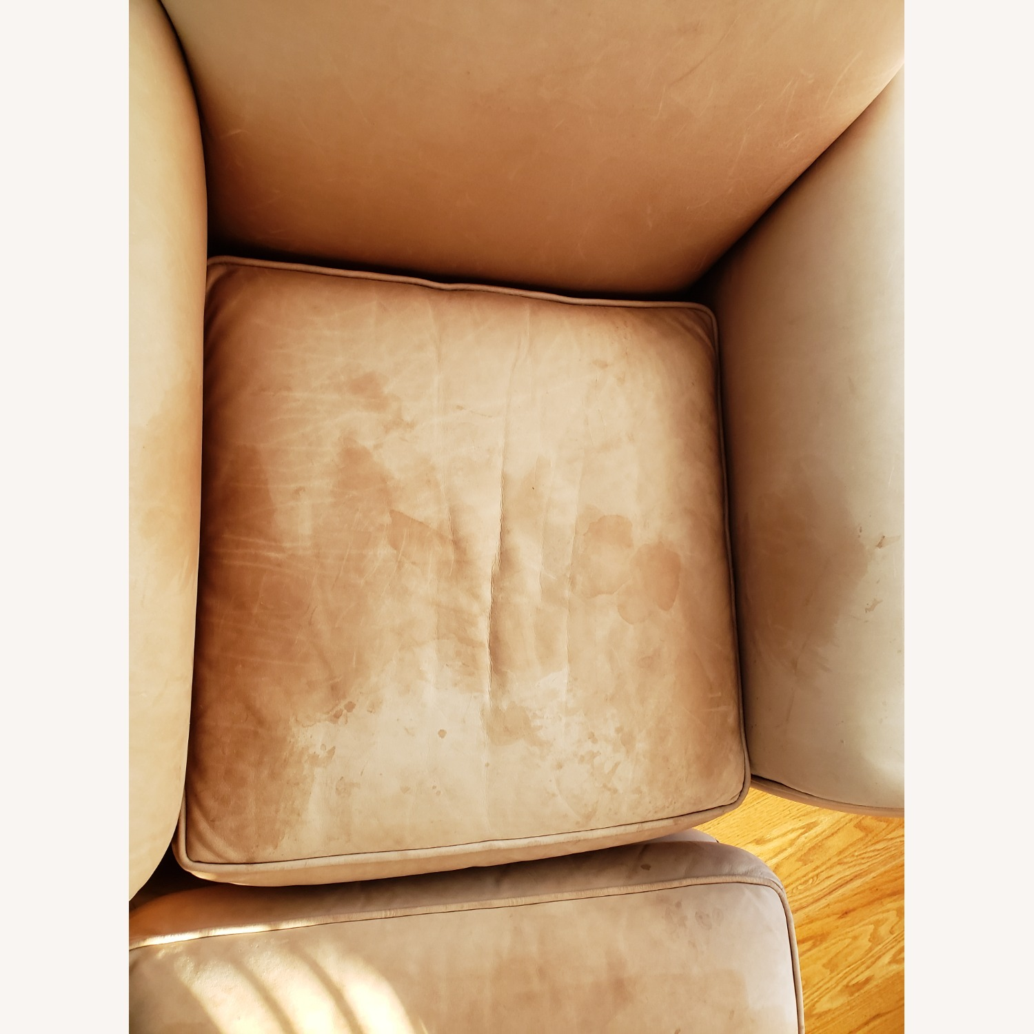 Leather Club Chair - image-4
