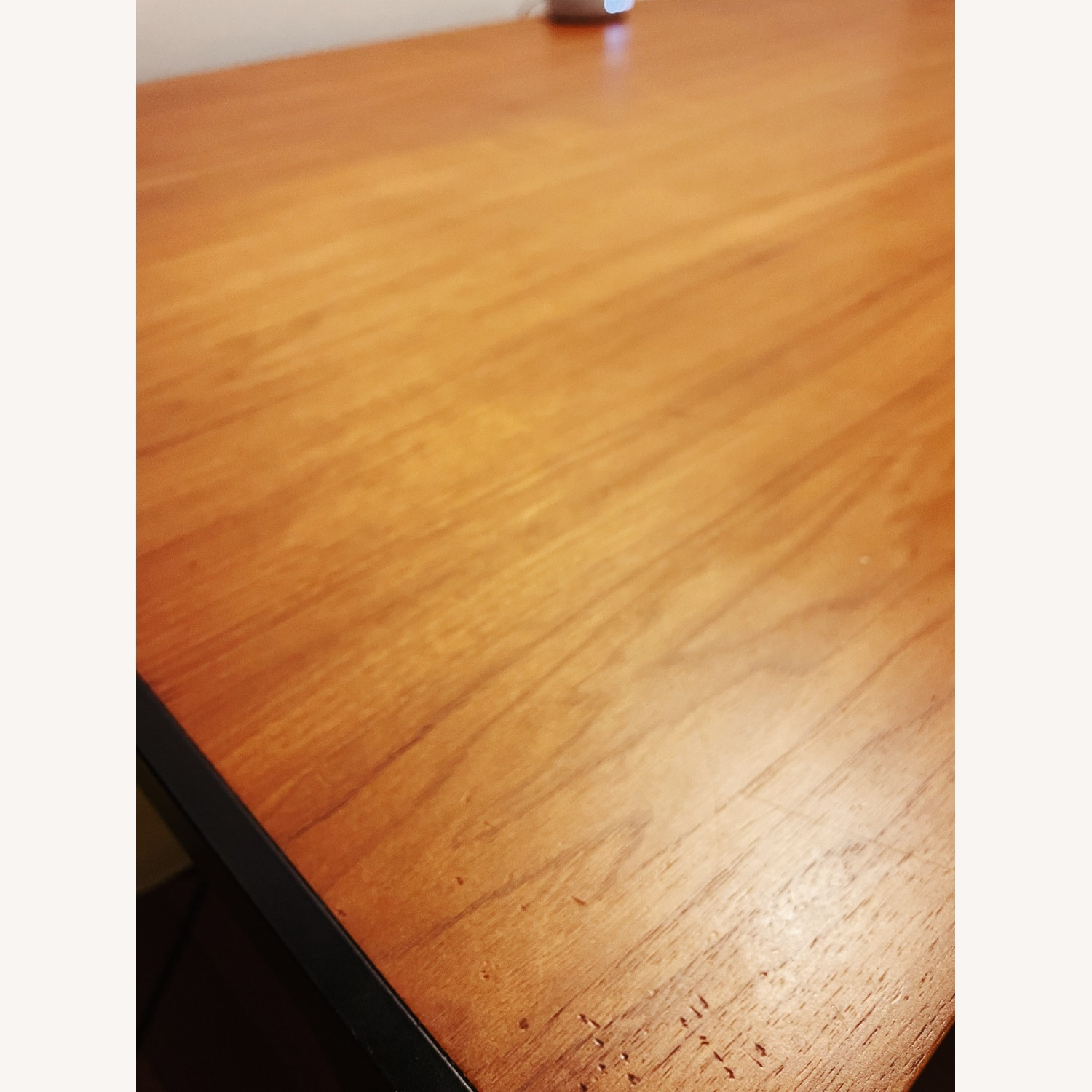 Design Within Reach Deneb Table with Natural Walnut Tabletop - image-2