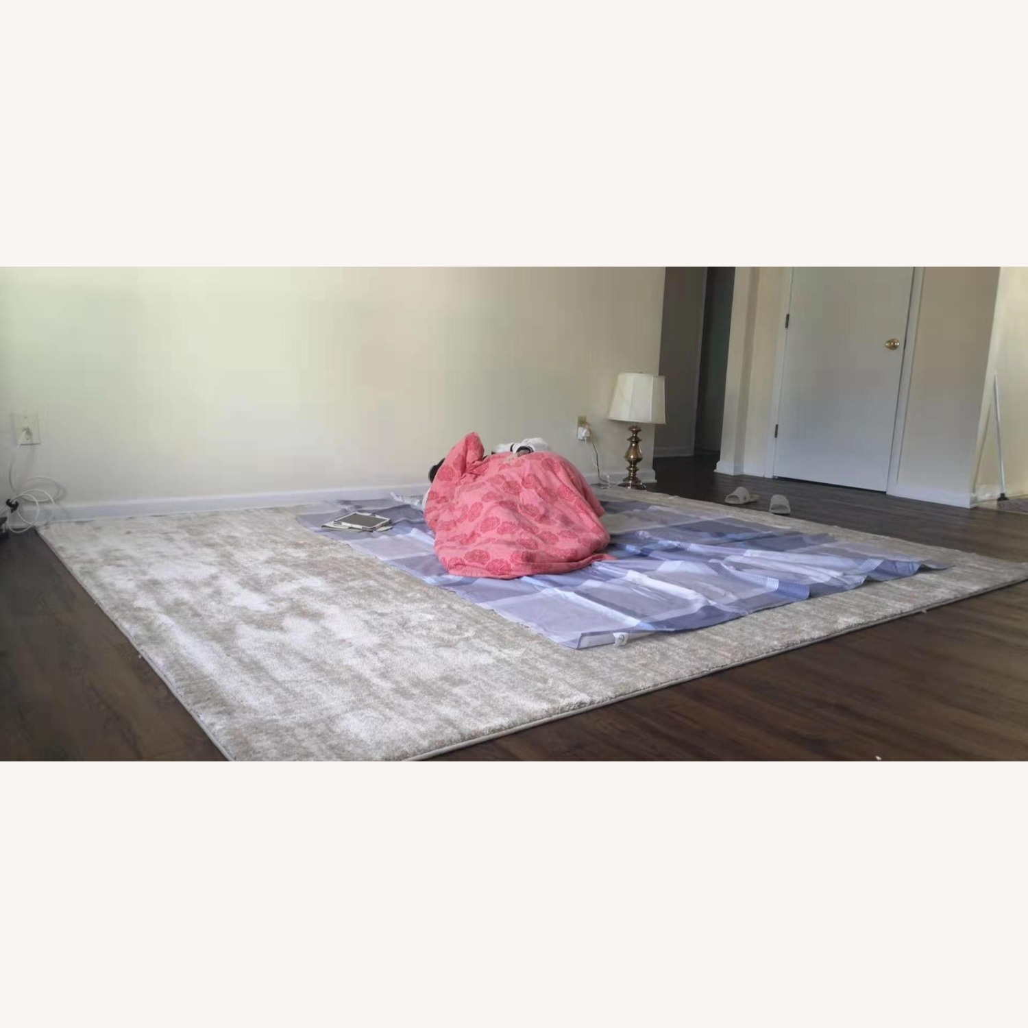 Home Decorator's  8 ft. x 10 ft. Solid Shag Area Rug - image-3