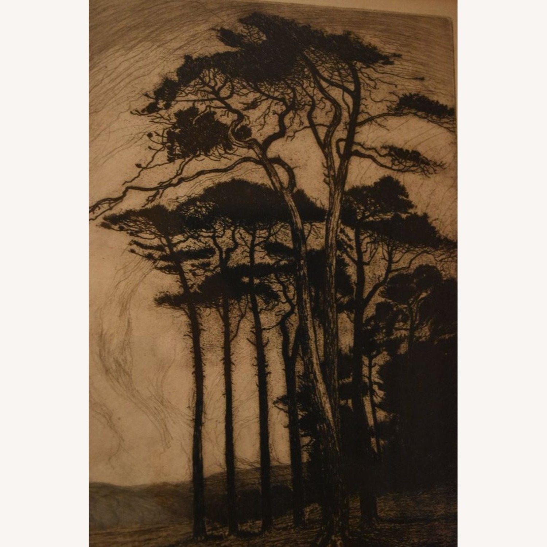 "Original Nature Scene Print ""Evening in Pineland"" - image-4"