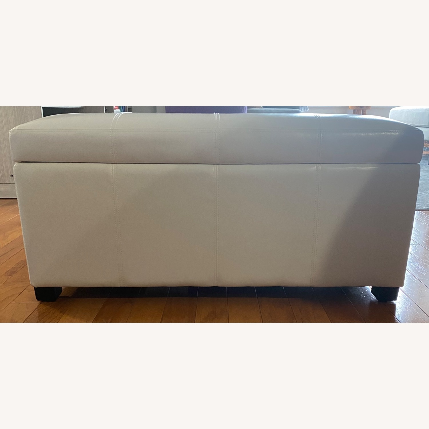 Ottoman/Trunk with Storage - image-1